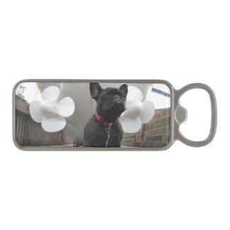 Black French Bulldog Magnetic Bottle Opener
