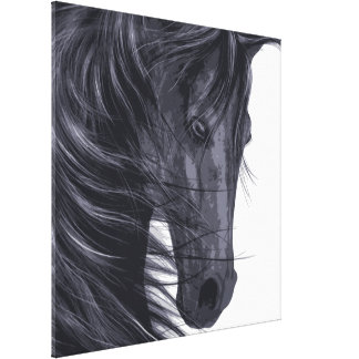 Black Horse With Long Mane Canvas Print