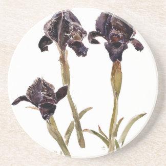 black iris of Jordan Coaster