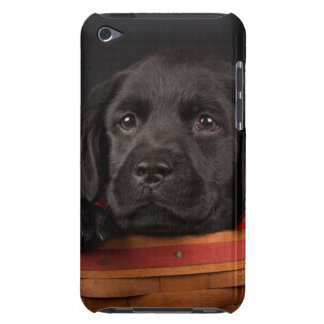 Black labrador retriever puppy in a basket iPod touch cases