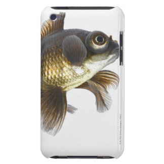 Black moor goldfish (Carassius auratus) 2 Barely There iPod Cases