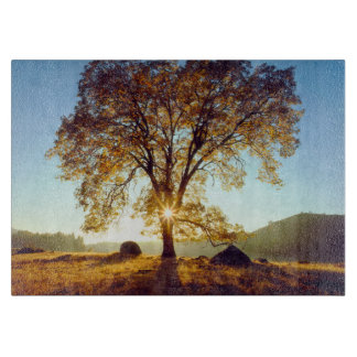 Black Oak Trees | Cleveland National Forest, CA Cutting Board