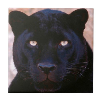 Black Panther Small Square Tile
