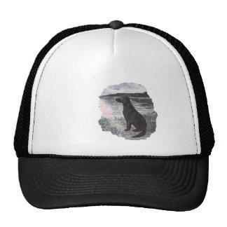 Black Retriever Dog Cap