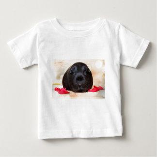 Black Short Haired Romance Guinea Pig Baby T-Shirt