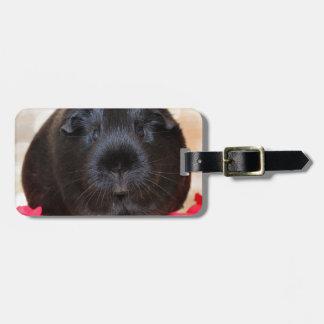 Black Short Haired Romance Guinea Pig Bag Tag