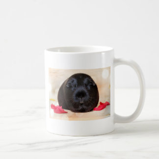 Black Short Haired Romance Guinea Pig Basic White Mug