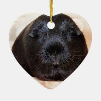 Black Short Haired Romance Guinea Pig Ceramic Heart Decoration