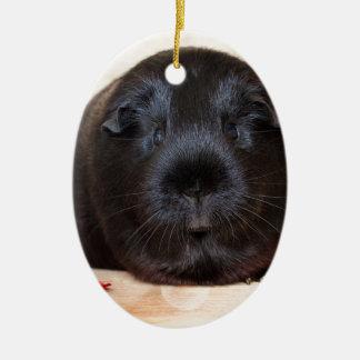 Black Short Haired Romance Guinea Pig Ceramic Oval Decoration