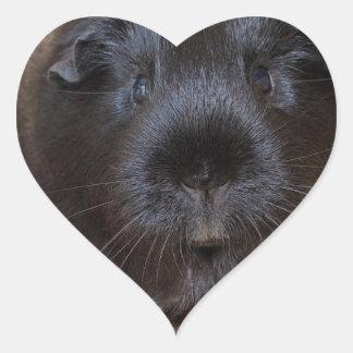 Black Short Haired Romance Guinea Pig Heart Sticker