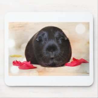 Black Short Haired Romance Guinea Pig Mouse Pad