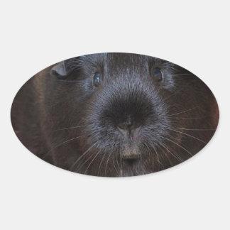 Black Short Haired Romance Guinea Pig Oval Sticker