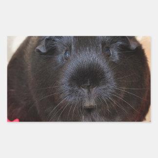 Black Short Haired Romance Guinea Pig Rectangular Sticker