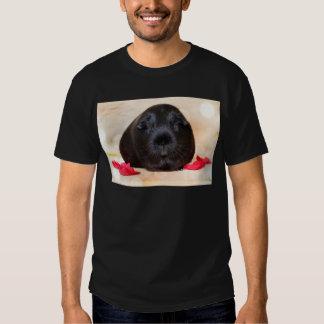 Black Short Haired Romance Guinea Pig Shirt