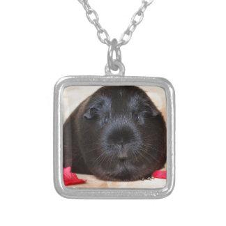 Black Short Haired Romance Guinea Pig Square Pendant Necklace