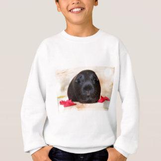 Black Short Haired Romance Guinea Pig Sweatshirt