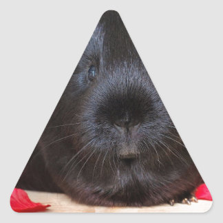 Black Short Haired Romance Guinea Pig Triangle Sticker