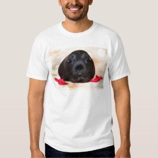 Black Short Haired Romance Guinea Pig Tshirt