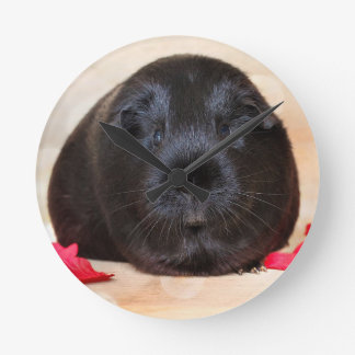 Black Short Haired Romance Guinea Pig Wall Clocks