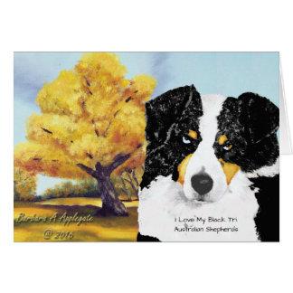 Black Tri Australian Shepherd an Old Cottonwood Card