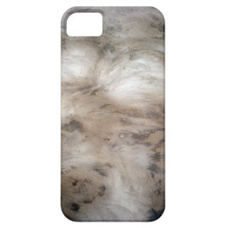 Black Wall iPhone 5 Cover