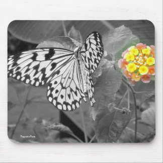 Black & White Buttefly Mousepad