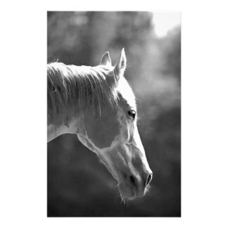 Black & White Pop Art Horse Stationery