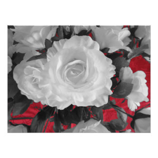 black white red roses classic photo print