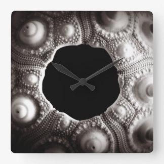 Black & White Sea Urchin Wall Clock