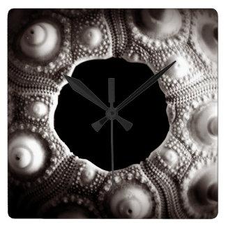 Black & White Sea Urchin Wall Clock