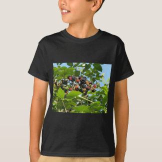 Blackberries bunch T-Shirt