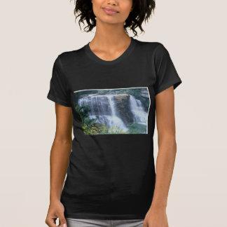 Blackwater Falls 01WV Shirts