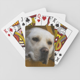 Blond Labrador retriever, Patagonia, Chile Playing Cards