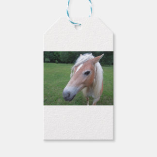 BLONDE HORSE GIFT TAGS