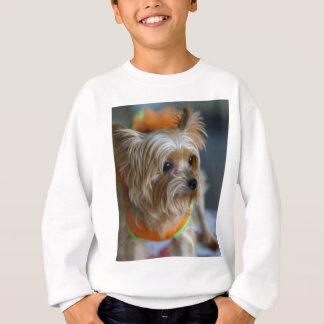Blonde Yorkshire Terrier Sweatshirt