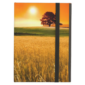 Blood-Red Sunset iPad Air Case