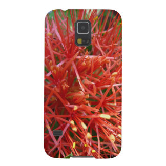 Bloom fire ball lily, Samsung Galaxy S5, covering Case For Galaxy S5
