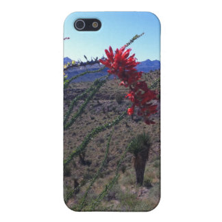 Blooming Ocotillo Cactus iPhone 5 Covers