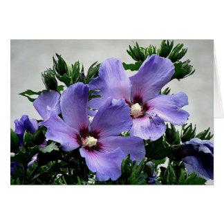 Blooms greeting card