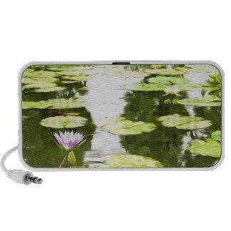 Blossom Lotus Flower In Pond Travel Speakers