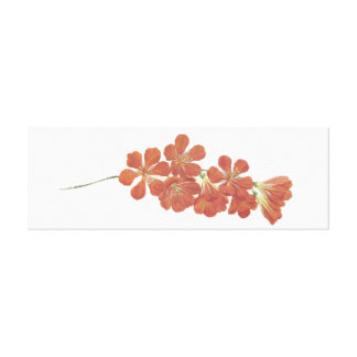 Blossomed Flower Canvas Art
