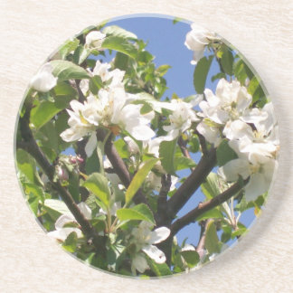 Blossoming Floral Branches-  Coaster