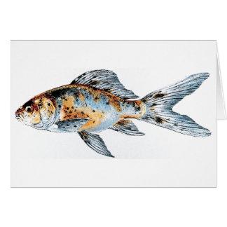 Blue and Orange Shubunkin Goldfish Fish Drawing Greeting Card