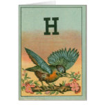 Blue Bird H Cards
