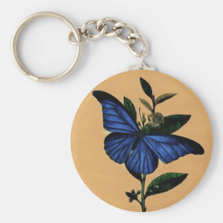 Blue butterfly key ring