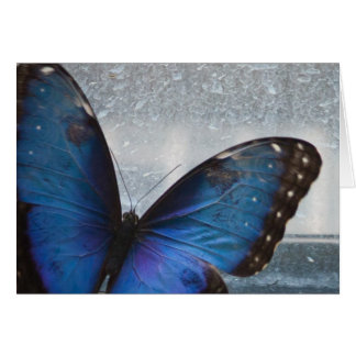 Blue Butterfly Note Card