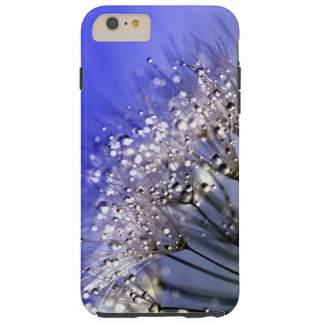 Blue Dandelion Tough iPhone 6 Plus Case