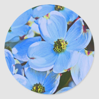 Blue Dogwood Classic Round Sticker