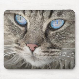 Blue Eyed Cat Mousemat