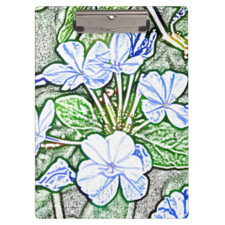 blue flowers on green sketch plumbago plant clipboard